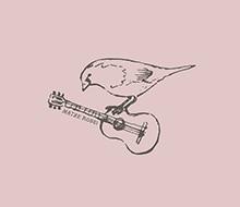 Guitar Sparrow